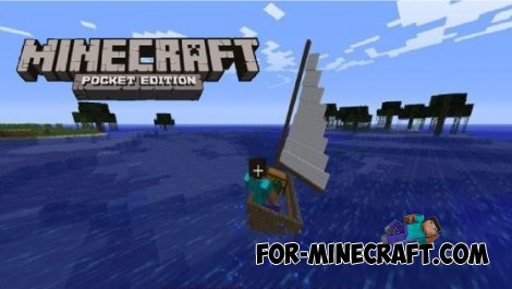 Where is the boat, skins in Minecraft Pocket Edition?