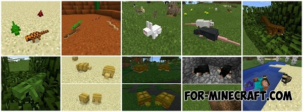 how to fish in minecraft pe