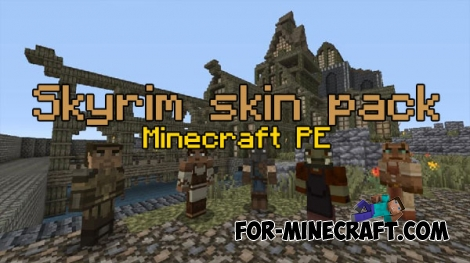 Skyrim skin pack (17 skins) for Minecraft PE