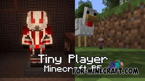Tiny Player addon (1.0.0-1.0.5)