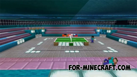 Table Tennis for Minecraft PE 1.X