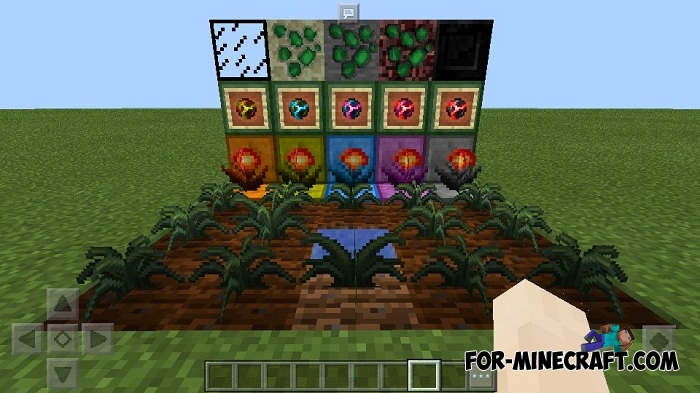 minecraft pe how to grow crops