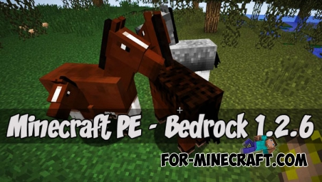 Download Minecraft PE (Bedrock) 1.2.6