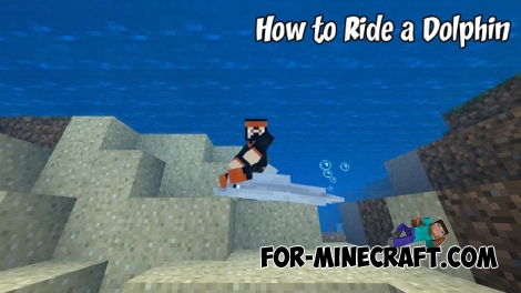 How to Ride a Dolphin in MCBE 1.2/1.7