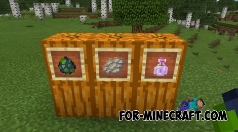 Minecraft Bedrock Edition 1.6.0.5 Features