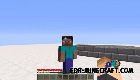 Nametag Hide addon for Minecraft PE 1.5+