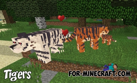 Tigers in Minecraft PE 1.8