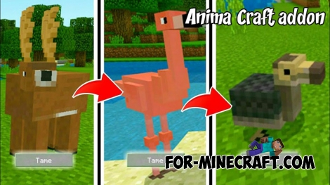 AnimalCraft addon for Minecraft 1.8+
