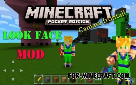 Look face mod for Minecraft Pocket Edition 0.10.5