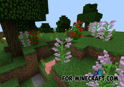 Sea of Flowers seed for MCPE