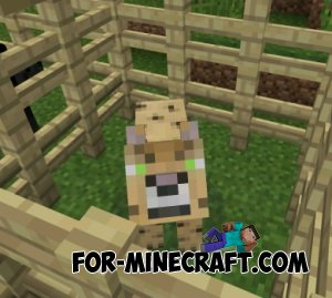 Big Cats Mod for Minecraft PE 0.11.0