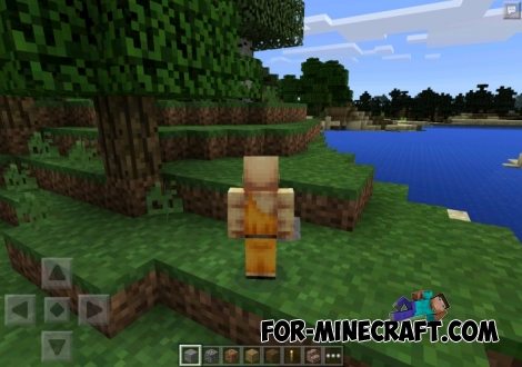 Minicraft texture [8x8] for Minecraft PE 0.11.1 / 0.11.0