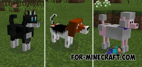 Doggy mod for Minecraft PE 0.15.6/0.15.7