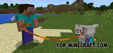 Colored Leads addon (MCPE 1.1)