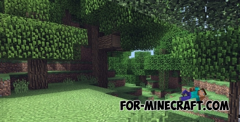 Continuum PE shaders (MCPE 1.2)