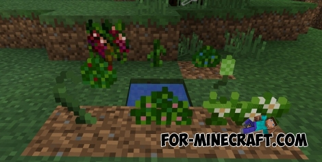 Harvest Craft mod (Minecraft PE 1.0)