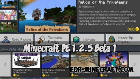 Download Minecraft PE 1.2.5 Beta 1