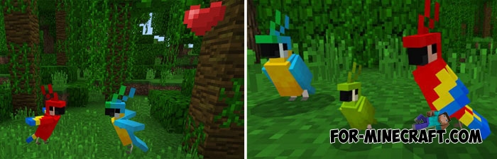 Baby Parrot addon for MCPE 1 2 6+