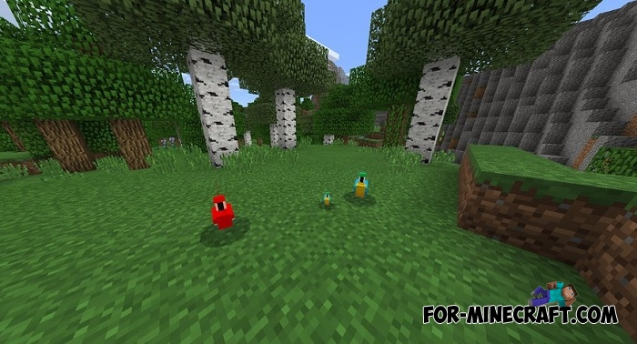Baby Parrot addon for MCPE 1.2.6+