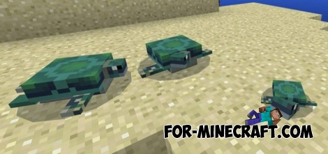 Turtles for Minecraft Bedrock 1.2