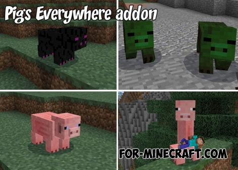 Pigs Everywhere addon for MCPE 1.0-1.2