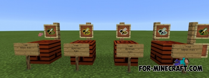 How To Automate Bees Forestry