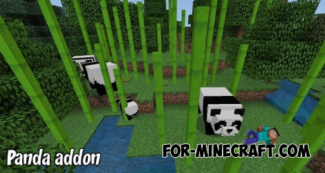Panda addon for Minecraft BE 1.6/1.7