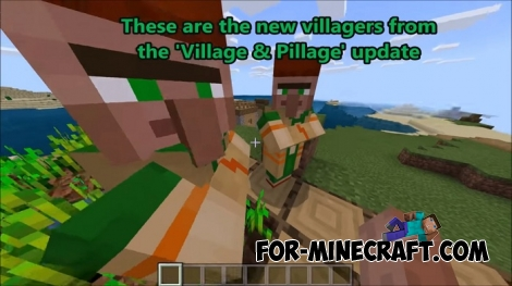 Village and Pillage addon v2 for Minecraft BE 1.7/1.9