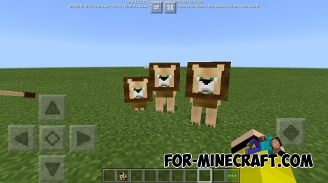 Lions in Minecraft PE 1.8
