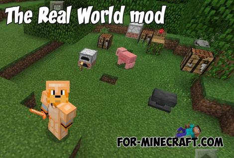 The Real World mod for Minecraft PE