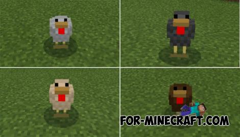 Colored Chickens Addon for Minecraft PE 1.10