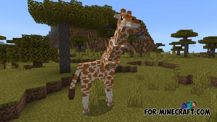 Giraffes Mod for Minecraft PE 1 11 0 9+