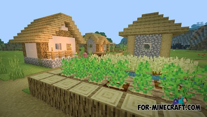 . Seeds for Minecraft PE