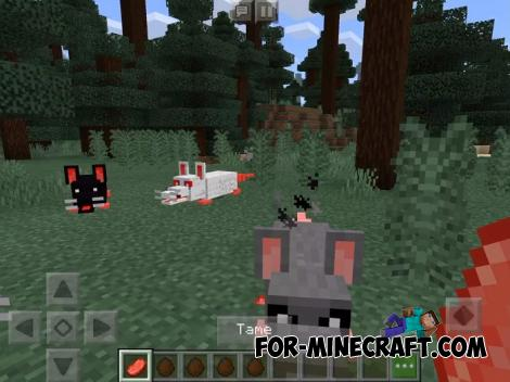 Rats Addon for Minecraft PE 1.13