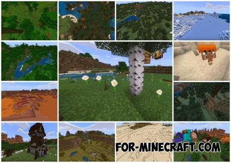 All Biomes Seed for Minecraft 1.13 & 1.14