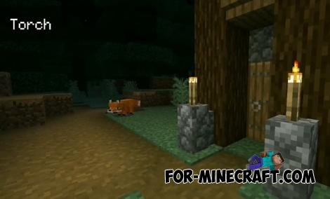 Animated Texture Pack for Minecraft PE 1.16