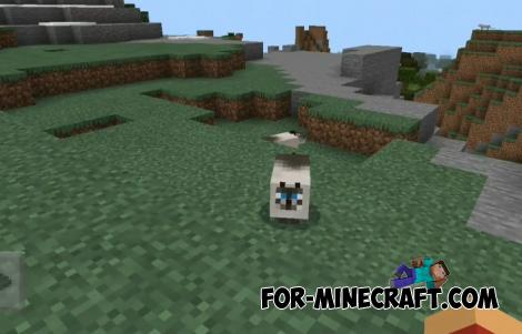 Fatty Cats Addon for Minecraft PE 1.16